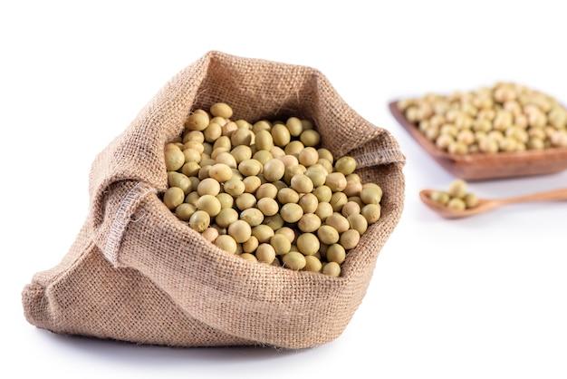 Gelbgrüne taiwanesische bio-sojabohnen ohne gvo, sojabohnen in einem isolierten behälter, nahaufnahme, schnittpfad. Premium Fotos