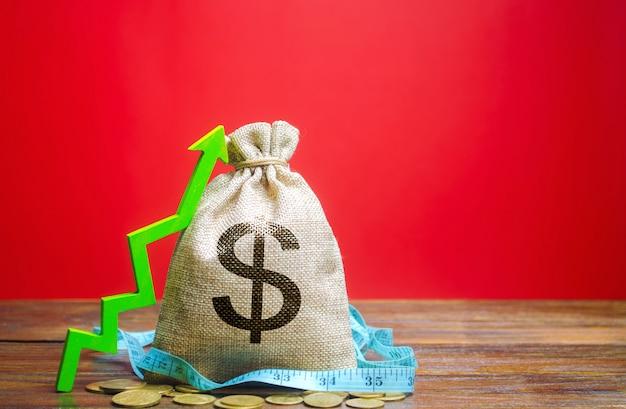 Geldsack mit münzen und aufwärtspfeil. das konzept eines erfolgreichen unternehmens. gewinne zu steigern Premium Fotos