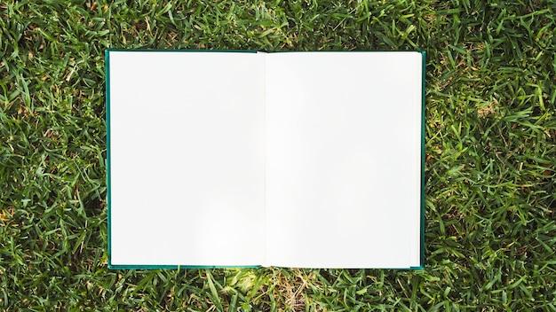 Geöffnetes notizbuch gesetzt auf grünes gras Kostenlose Fotos