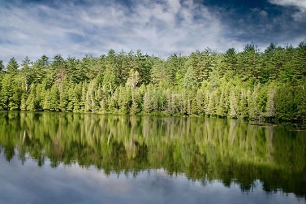 Gespiegelte landschaft Kostenlose Fotos