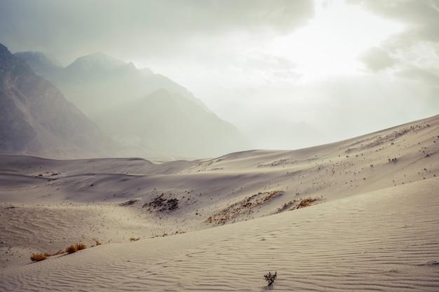 Gestalten sie ansicht der kalten wüste gegen schnee mit einer kappe bedeckten gebirgszug und bewölkten himmel in skardu landschaftlich. Premium Fotos