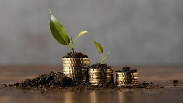 Gestapelte münzen mit schmutz und pflanze Kostenlose Fotos