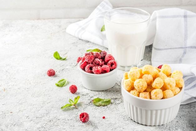 Gesunde frühstückszutaten. frühstückskost aus getreide, milch oder joghurtglas, himbeeren und minze auf grauem steinhintergrund, kopienraum Premium Fotos