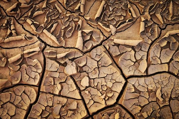 Getrocknete rissige erdboden-bodentextur. Premium Fotos