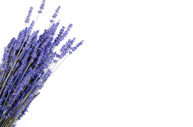 Getrockneter lavendelblumenstrauß auf einem weißen hintergrund. platz kopieren Premium Fotos