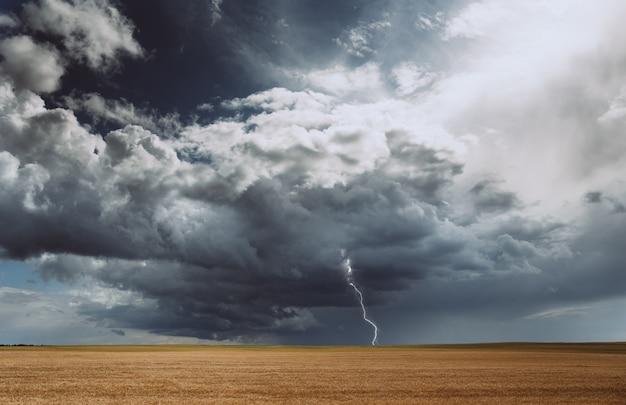 Gewitter hurrikanwolken feld landwirtschaftlichen nutzpflanzen weizen Premium Fotos