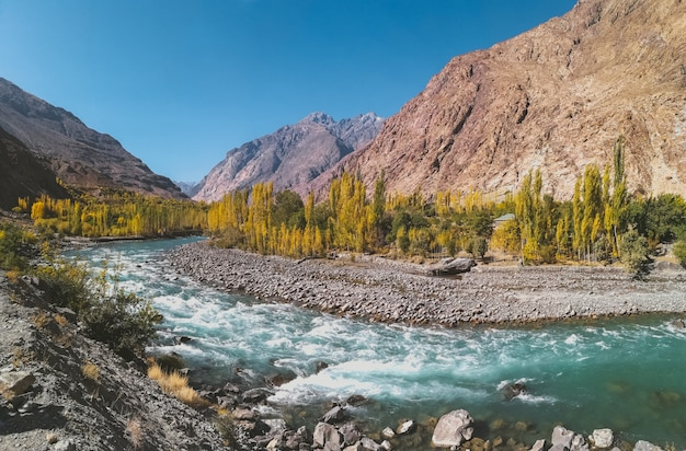 Gilgit fluss, der durch gupis fließt, mit blick auf gebirgszug und bäume im herbst. Premium Fotos