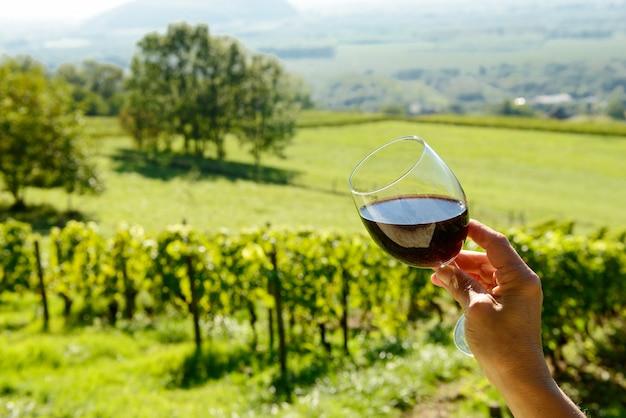 Glas rotwein der sonne ausgesetzt Premium Fotos
