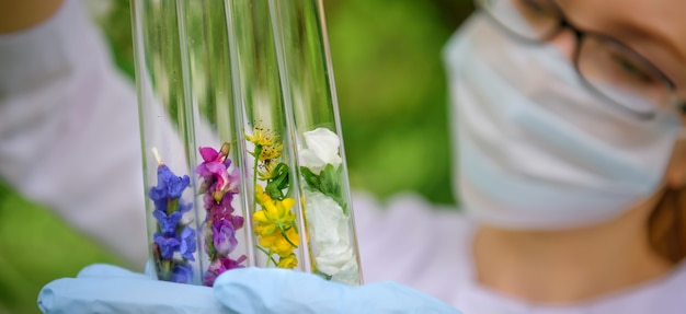 Glasröhrchen mit pflanzenproben, nahaufnahme. weibliche hände in medizinischen handschuhen, die flaschen halten, unscharfer hintergrund. Premium Fotos