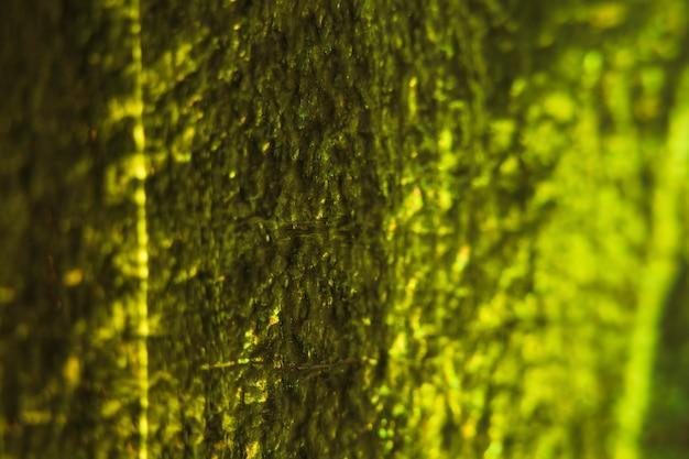Glitter textur hintergrund Kostenlose Fotos