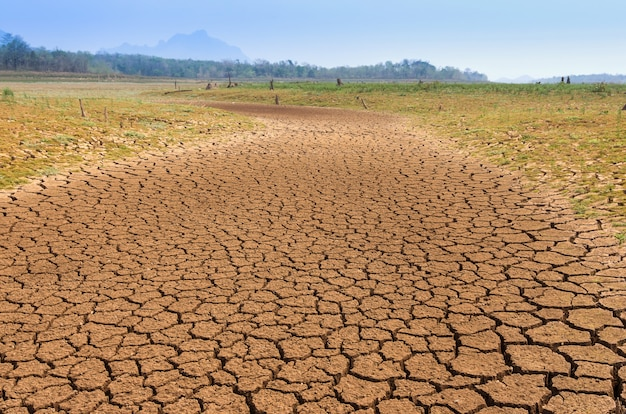 Globale erwärmung, dürre. Premium Fotos
