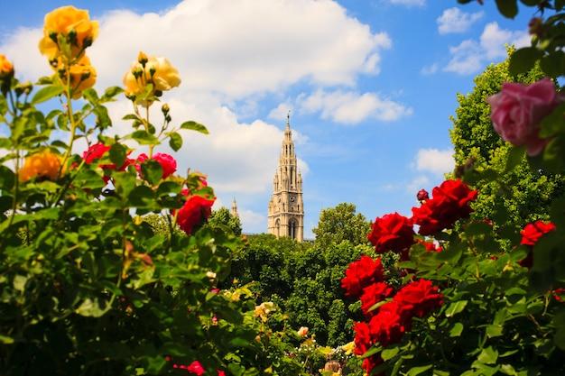 Glockenturm des stephansdoms, wien Premium Fotos
