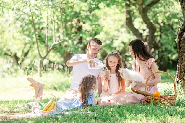 Glückliche familie auf einem picknick im park an einem sonnigen tag Premium Fotos