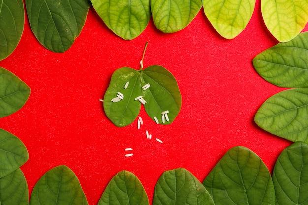 Glücklicher dussehra-rahmen mit grünem blatt und reis Premium Fotos