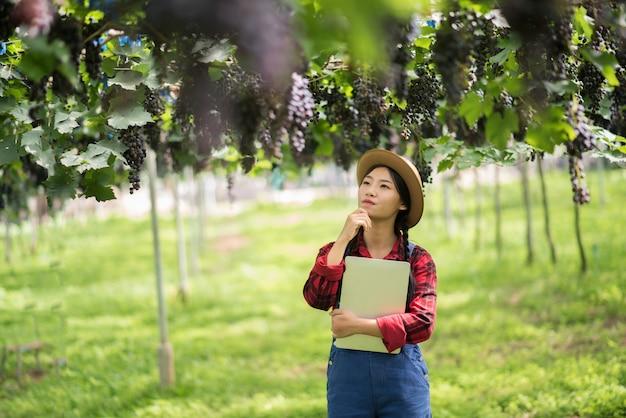 Glücklicher gärtner der jungen frauen, der niederlassungen der reifen blauen traube hält Kostenlose Fotos
