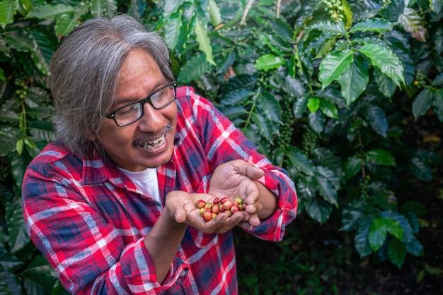 Glücklicher männlicher landwirt mit kaffeekirschen in seinen händen auf kaffeeplantage Premium Fotos