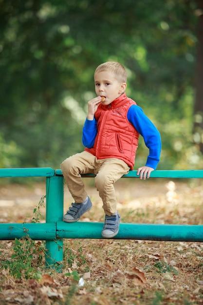 Glücklicher stilvoller junge sitzen auf dem zaun im wald im sonnigen herbsttag. lustiger lächelnder junge, der kekse im grünen park draußen isst. kleiner fröhlicher junge, der einen spaziergang auf der natur im warmen frühling genießt. Premium Fotos