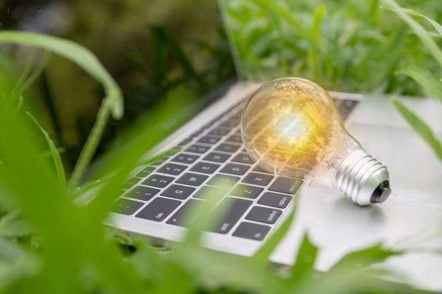 Glühbirne auf laptop im park Premium Fotos