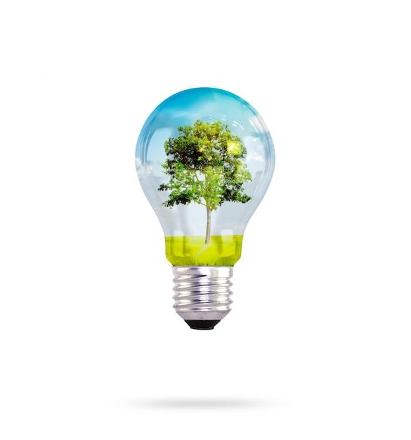 Glühbirne mit baum im inneren Kostenlose Fotos