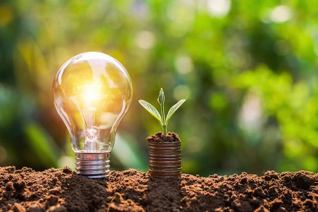 Glühlampe auf boden mit der jungpflanze, die auf geldstapel wächst. einsparung von finanz- und energiekonzept Premium Fotos