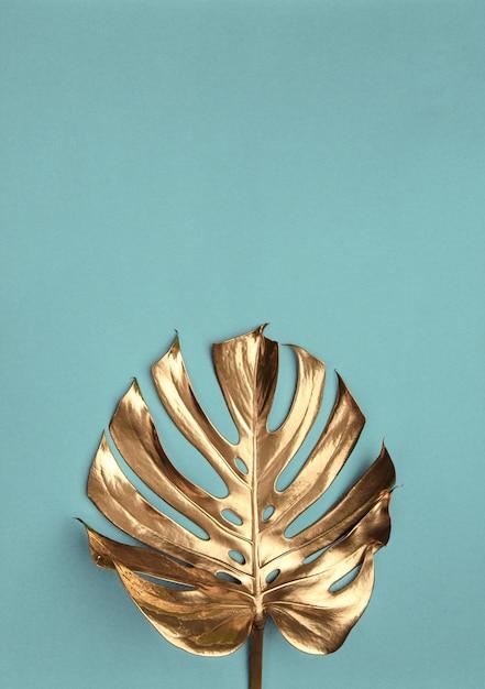 Goldene monstera-blätter auf hellem türkisfarbenem hintergrund Premium Fotos