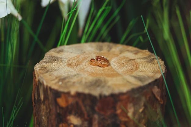Goldene ringe der hochzeit auf dem stumpf in einem grünen gras Kostenlose Fotos