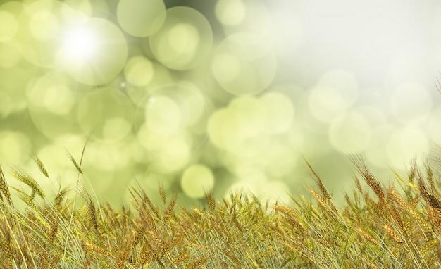 Goldener weizen gegen einen defocussed hintergrund Kostenlose Fotos