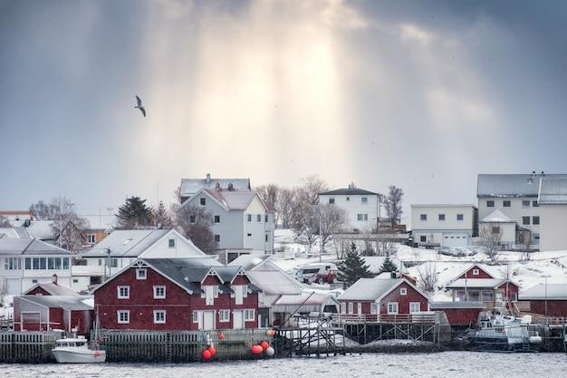 Goldenes sonnenlicht über skandinavischem dorf mit vogelfliegen Premium Fotos