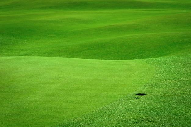 Golffeld mit einem kugelloch Premium Fotos