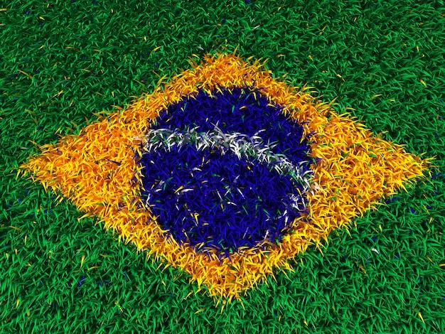 Gras brasilien flagge Premium Fotos