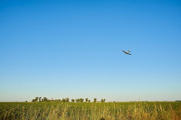 Grasfeld mit einem flugzeug, das über sie in einem blauen himmel fliegt Kostenlose Fotos