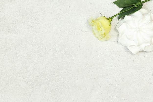 Grauer hintergrund mit rose und eibisch Premium Fotos