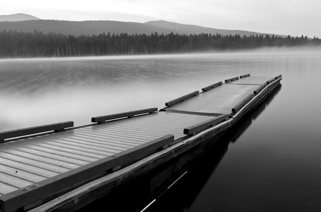 Graustufenaufnahme eines wasserbootdocks in einem see, der von einem wald umgeben ist Kostenlose Fotos