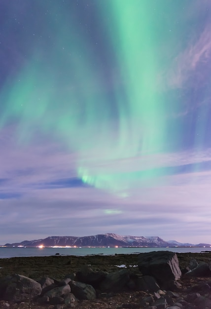 Green aurora borealis über einen schwarzen sandstrand Premium Fotos