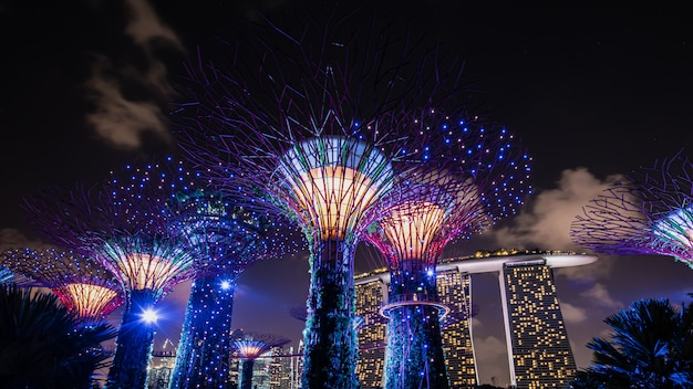 Großartige und prächtige stadtgärten singapurs. Premium Fotos