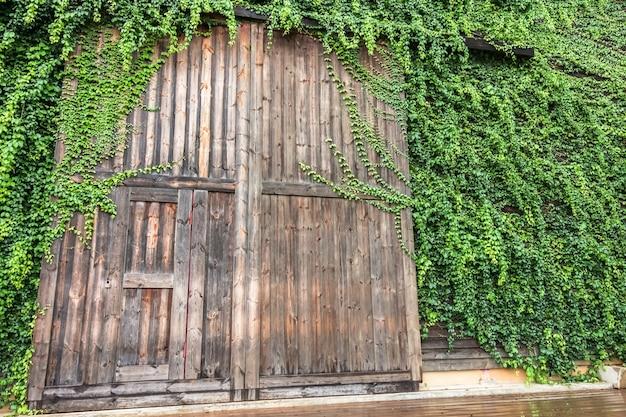 Große holztüreinfassung mit der grünpflanze, die birder's lodge genannt wird Premium Fotos