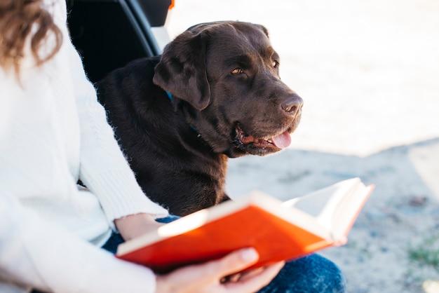 Großer schwarzer hund im auto Kostenlose Fotos