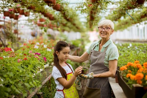 Großmutter und ihr enkelkind, die im garten mit blumen genießen Premium Fotos