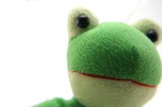 Grün flauschig spielzeug, verspielt Kostenlose Fotos