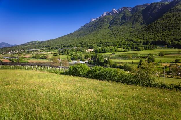 Grüne alpine landschaft in trento Premium Fotos