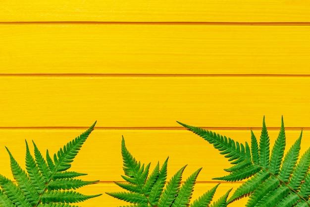 Grüne farbe des thailändischen farns tropische betriebsauf gelber hölzerner beschaffenheit Premium Fotos