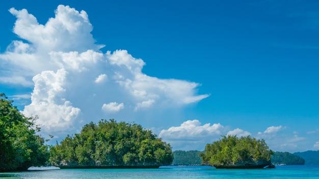 Grüne felsen nahe batu lima, biodiversitätsresort auf gam island, doberai eco resort im hintergrund, urai island, west papuan, raja ampat, indonesien. Premium Fotos