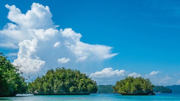Grüne felsen nahe batu lima, biodiversitätsresort auf gam island, doberai eco resort, insel urai, west papuan, raja ampat, indonesien. Premium Fotos