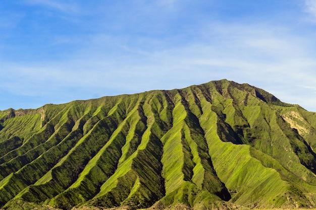 Grüne gebirgsleiter an einem sonnigen tag Kostenlose Fotos