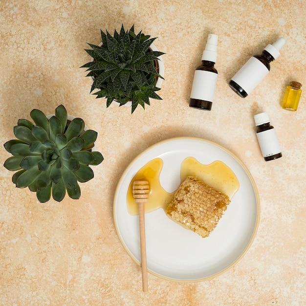 Grüne kaktuspflanze mit ätherischen ölen und honigkamm auf keramischer platte mit schöpflöffel gegen strukturierten hintergrund Kostenlose Fotos