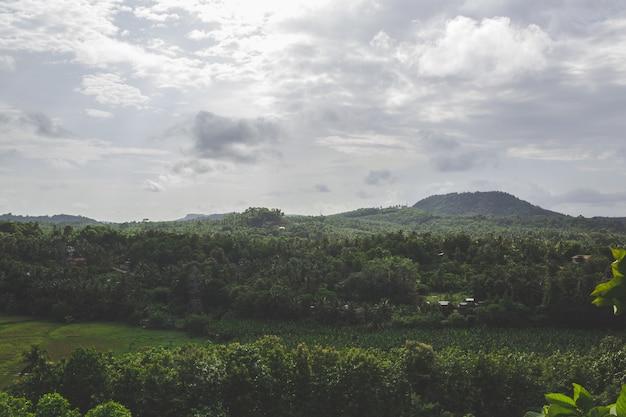 Grüne landschaft mit hügel im hintergrund Kostenlose Fotos