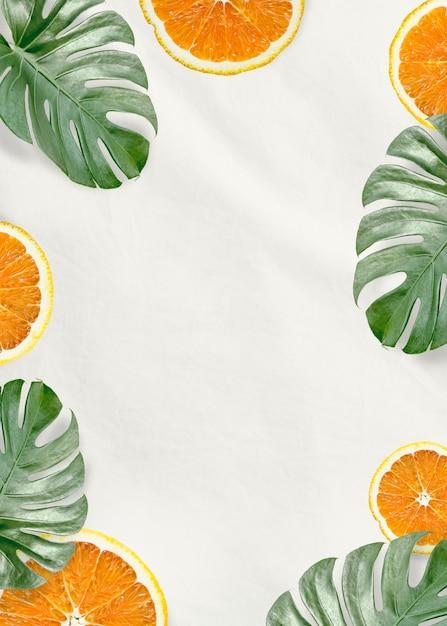 Grüne monstera blätter und orange Kostenlose Fotos