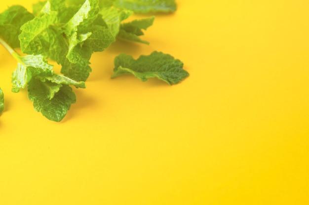 Grüne tadellose blätter auf draufsicht des gelben hintergrundes. cocktail oder sommergetränk zutaten. Premium Fotos