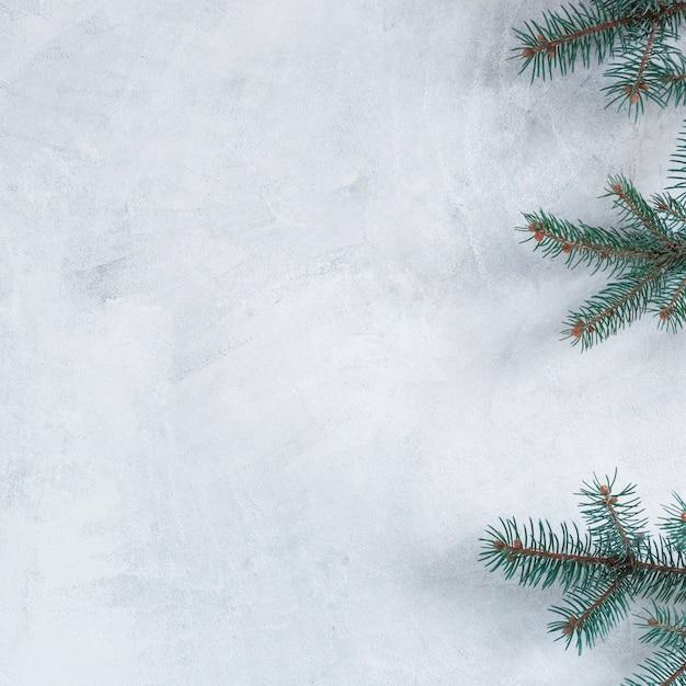 Grüne tannenbaumaste auf tabelle Kostenlose Fotos