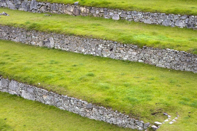 Grüne terrassen bei machu picchu in peru Premium Fotos